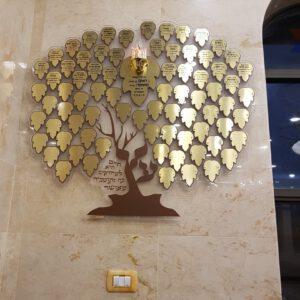 עץ חיים